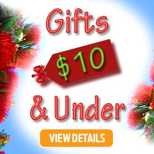 Gifts $10 & Under