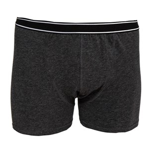 02221 - Mens Fitted Trunks