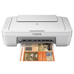 Canon MG2960 Multifunction Printer