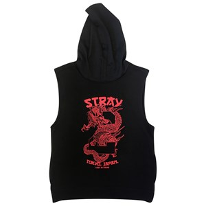 30026 - Stray Boys Edam Sleeveless Hoodie