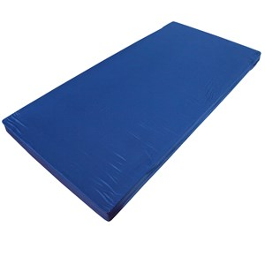 6686 - Single Foam Mattress